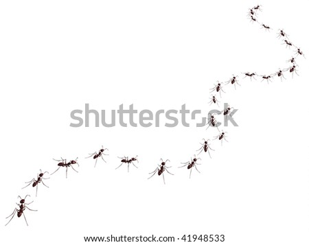 3d render of the ant - stock photo