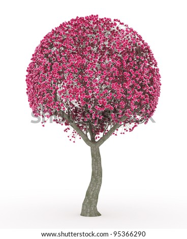 3d render Peach blossom no leaves isolated on white - stock photo
