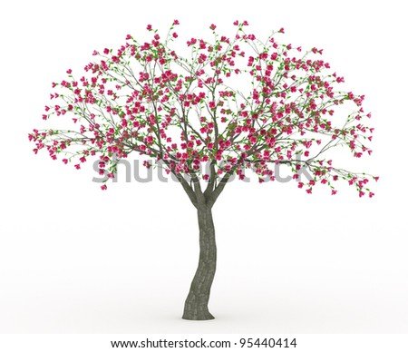 3d render Peach blossom with little green leaves isolated on white - stock photo