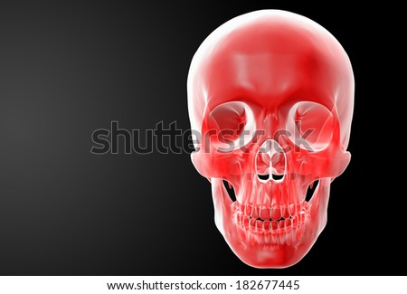 3d render red skull on black background - front view - stock photo