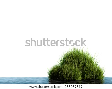 3d render water plant  - stock photo
