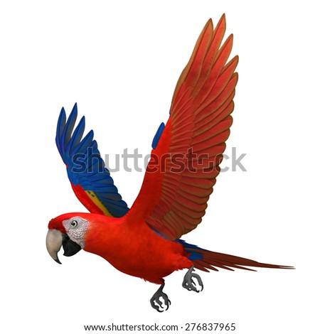 """3D Rendered Ara Macao """"Scarlet Macaw Parrot"""" - stock photo"""