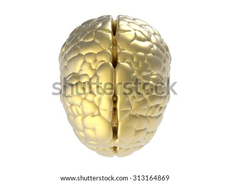 3d rendered golden brain  - stock photo