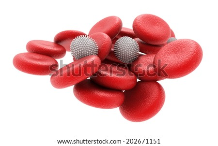 3d rendered human blood cells - stock photo