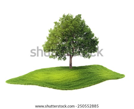 3d rendered illustration of an island with tree floating in the air. Isolate on white background - stock photo