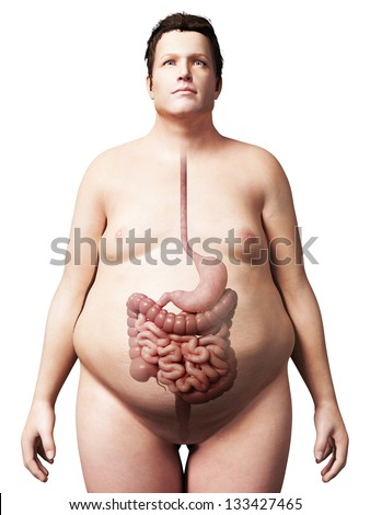 3d rendered illustration of an overweight man - digestive system