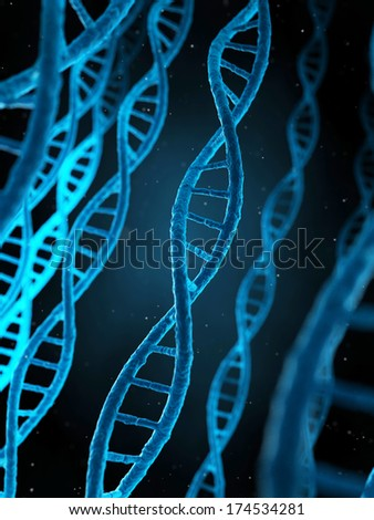 3d rendered illustration - the human dna - stock photo