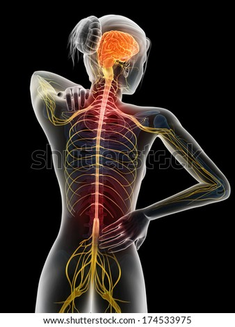 3d rendered illustration - woman with backache - stock photo