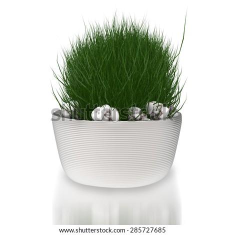 3d rendered pot plant - stock photo