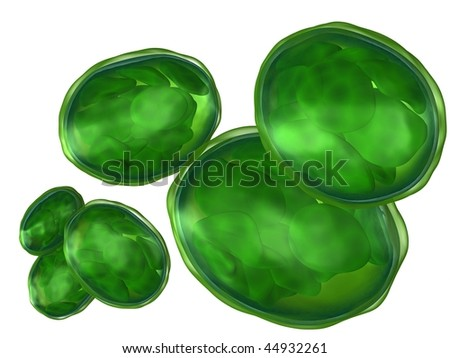 3d rendered set of plant organelle chloroplast isolated on white - stock photo