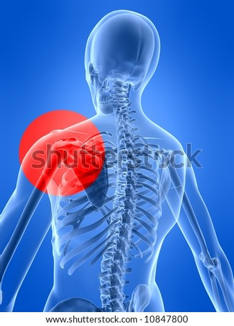 3d rendered x-ray illustration of a human skeleton with a painful shoulder - stock photo