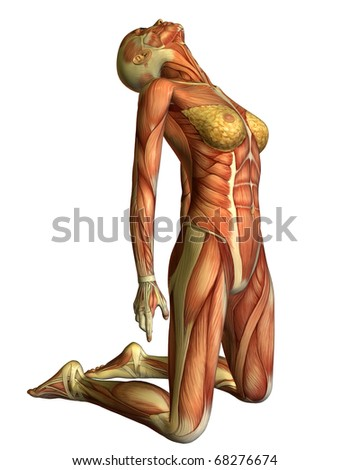 3D rendering muscle woman on her knees head back - stock photo