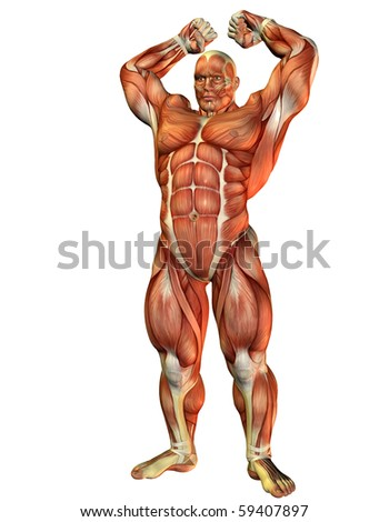 3D rendering of a Athlete with muscle strength Pose - stock photo