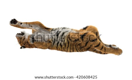 3D rendering of a big cat tiger playing isolated on white background