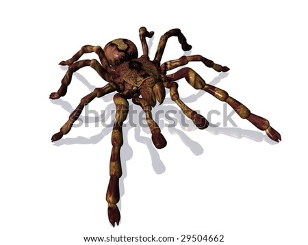 3D rendering of a giant spider on white background with reflective surface - stock photo