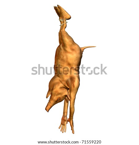 3d rendering of a hanging pig as illustration - stock photo