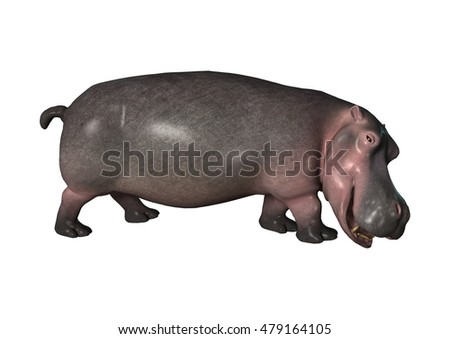 3D rendering of a hippopotamus isolated on white background