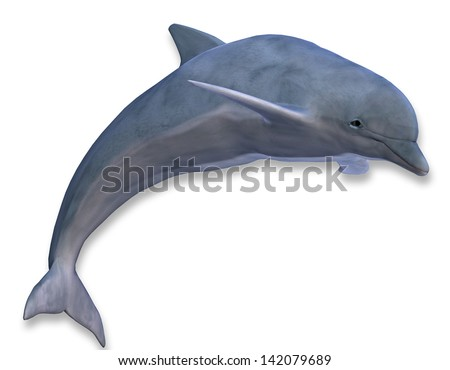 3D rendering of a jumping dolphin - stock photo