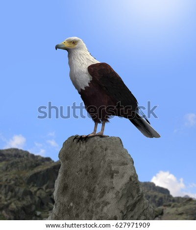 bald eagle render by - photo #31
