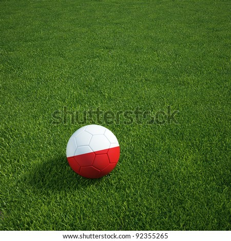 3d rendering of a Polish soccerball lying on grass