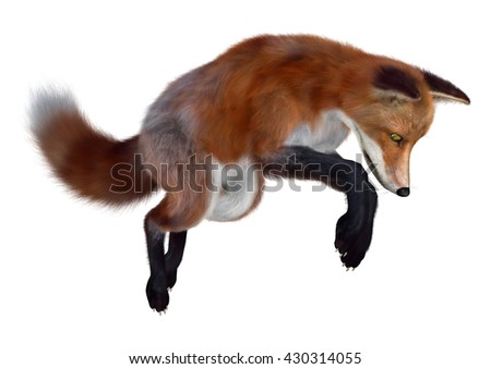 3D rendering of a red fox isolated on white background