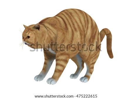 3D rendering of a red tabby cat isolated on white background