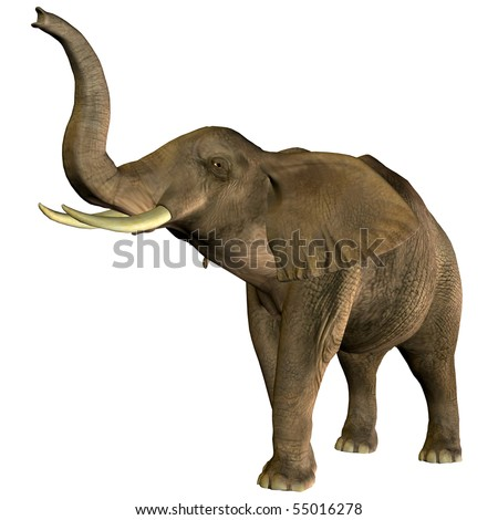 3D rendering of an African elephant with raised trunk