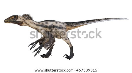 3D rendering of Deinonychus.