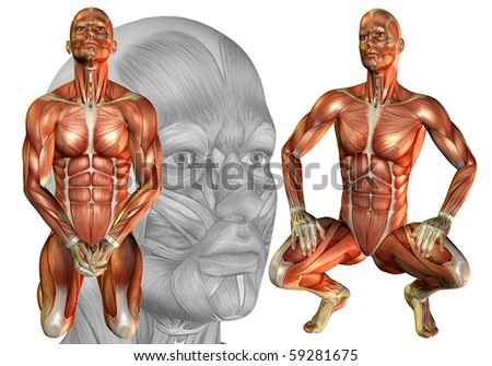3D rendering of the male body squatting - stock photo