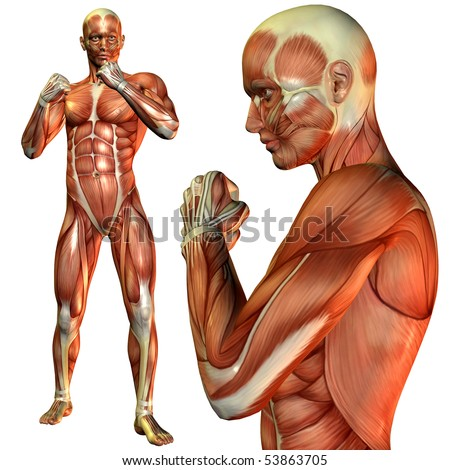 3D rendering of the muscle man in a fighter's pose - stock photo
