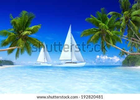 3D Sailboats on beach and palm tree. - stock photo