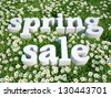 3d text spring sale in floral...