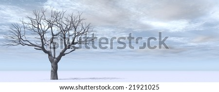 3d white frozen isolated tree on  a blue sky background with clouds. This is a horizontal banner ideal for natural winter theme designs.