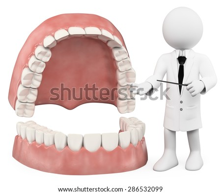 3d white people. Professor showing a denture. Isolated white background.  - stock photo