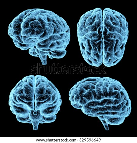 3d x-ray brain - four various views, isolated on black background - stock photo
