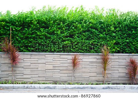 Decorative garden on a granite fence isolated on white background - stock photo