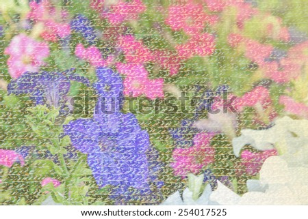 Double exposure background of colorful petunia flowers with motley wool knitted texture closeup  - stock photo