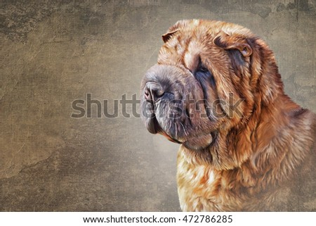 Drawing Mixed breed dog portrait oil painting on old vintage color grunge paper background