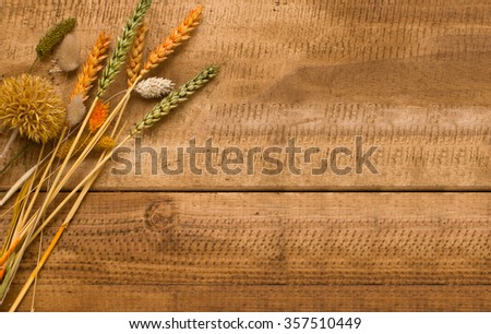 Dried cereal plants on the wooden table background.