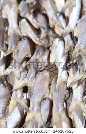 dried fish sea food is good heath form thailand - stock photo