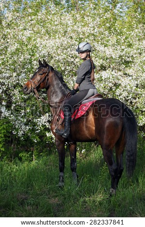 ?eauty riding thoroughbred in the blossoming cherry orchard - stock photo