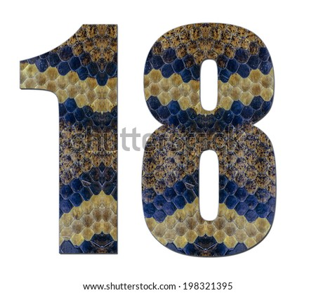 18 eighteen number applied snake on white background, idea applied number design skin texture snake modern number on 1,8,18 white background - stock photo