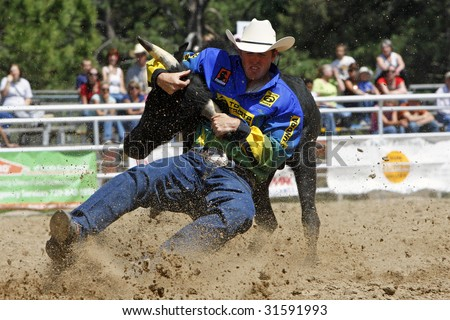 ELIZABETH, COLORADO - JUNE 6: PRCA cowboy Josh Peek earns the best time in Saturday afternoon Steer Wrestling action at the Elizabeth Stampede Rodeo on June 06, 2009 in Elizabeth, CO. - stock photo