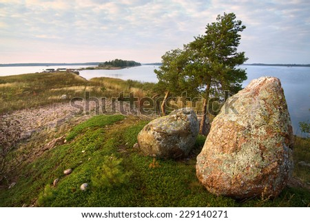 evening watchers, two stones and dwarf pines, Baltic sea                              - stock photo