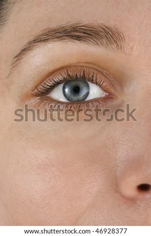 eye blue, closeup - stock photo