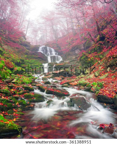 famous alpine beautiful waterfall Borzhava under the mountain village Pylypets ski resort. Cold net rough water fly through the ancient rocks on the background of bright forests in the fog - stock photo