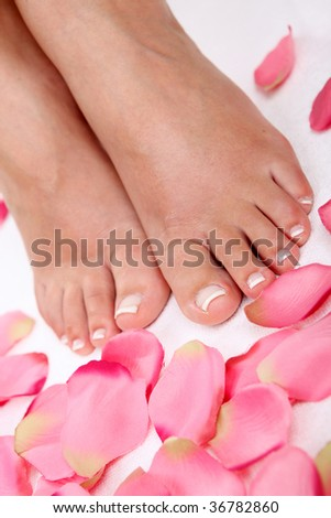 feet and rose-petals - stock photo