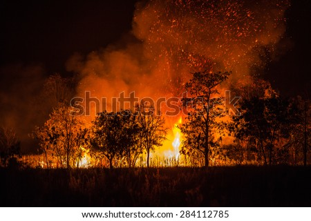 Fire caused by the destruction by humans. - stock photo