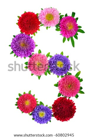 floral alphabet isolated on white background. letter S