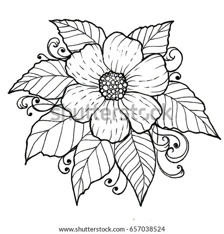 Floral background flower leaves black white stock illustration floral background with flower and leaves black and white graphics hand drawing design element mightylinksfo